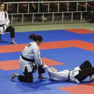 Kelemen-Ryu Ju Jitsu Bemutató a Nemzeti Sportcsarnokban