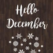 Decemberi programjaink
